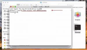 MacOS 10.15: Catalina - sudo killall -HUP mDNSResponder