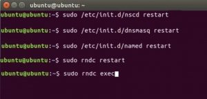 Clear DNS Cache on Linux