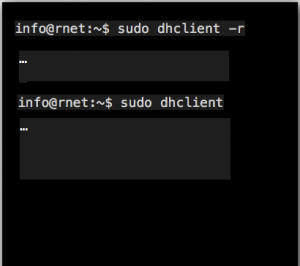 Linux/Ubuntu sudo dhclient – r