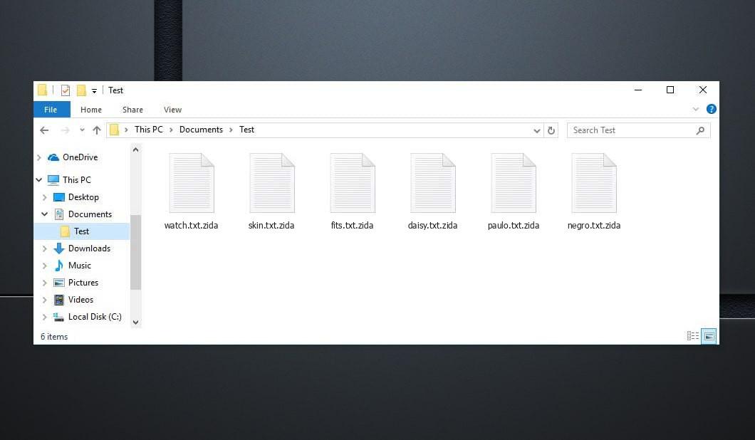 Zida Virus - crypted .zida files